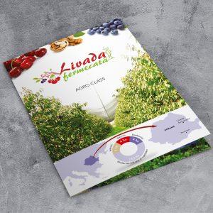 brosura A4
